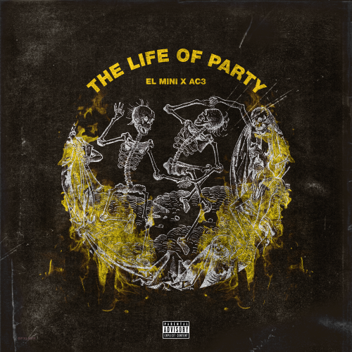 thelifeofparty2